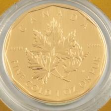 Kultaraha, Kanada200 dollaria, 2007