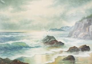 B. Viking Åström*
