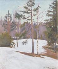 Pauli Heinonen*