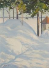Carl Johan Danielsson 1866-1945