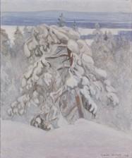 Kalle Halonen