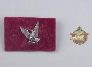Viron ensimmäisen tasavallan lentomerkki (kapt. Alfred Nõmmik)