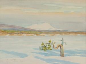Einari Junttila*
