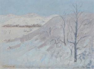 Aarre Heinonen*