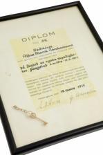 Kunniamerkkejä, 2 kpl ja dokumentteja