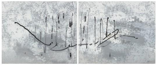 Maiju Tirri (1970-)*