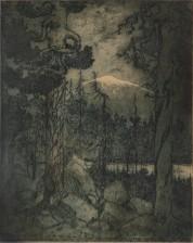 Harald Gallén