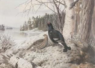 Matti Karppanen (1873-1953) T32*