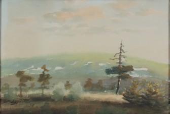 Einari Junttila *