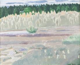 Inari Krohn*